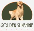 Golden Sunshine Criação